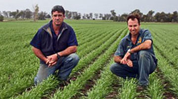 Read the story of Consistent Yields Achieved at Narrabri with the Excel Stubble Warrior